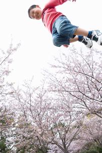 桜並木でジャンプする男の子の写真素材 [FYI04085936]