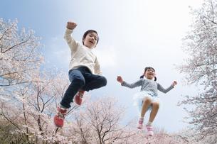 桜並木でジャンプする子供たちの写真素材 [FYI04085940]