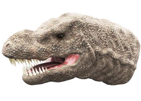 ティラノサウルスのイラスト素材 [FYI04086031]