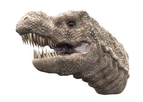 ティラノサウルスのイラスト素材 [FYI04086032]