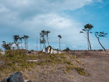 東日本大震災の被災地、宮城県仙台市荒浜地区の景色。の写真素材 [FYI04086075]