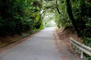 坂道錯視の起こるおばけ坂の写真素材 [FYI04086327]