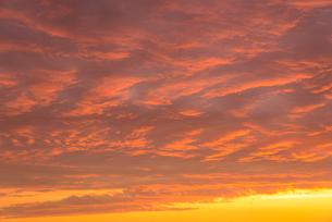 大自然の雄大な 夕焼けの写真素材 [FYI04086714]