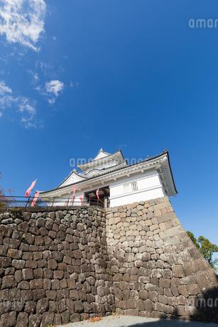 聳え立つ小田原城の写真素材 [FYI04086925]