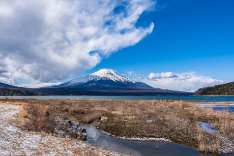山梨県 山中湖から見る富士山の自然風景の写真素材 [FYI04087006]