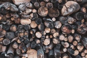 沢山の薪の写真素材 [FYI04087311]