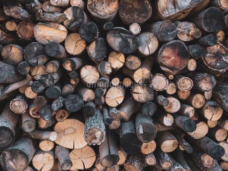 沢山の薪の写真素材 [FYI04087312]