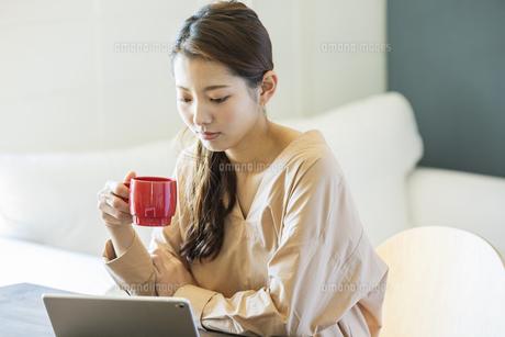 タブレットPCを見る日本人女性の写真素材 [FYI04087519]