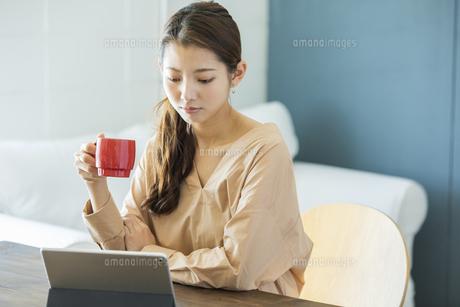 タブレットPCを見る日本人女性の写真素材 [FYI04087520]