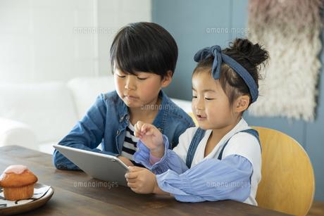 タブレットPCを見る日本人きょうだいの写真素材 [FYI04087524]