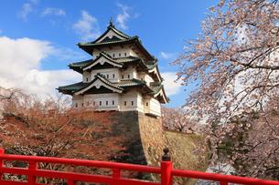 5月 桜の弘前城 -東北の春-の写真素材 [FYI04087595]