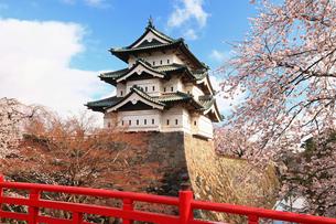 5月 桜の弘前城 -東北の春-の写真素材 [FYI04087597]