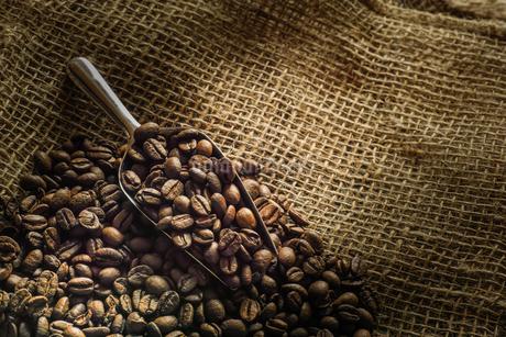 コーヒー豆の写真素材 [FYI04087690]