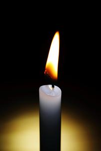 ロウソクの火の写真素材 [FYI04087696]