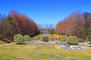 神奈川県立 相模原公園の写真素材 [FYI04087733]