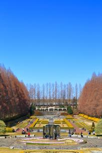 神奈川県立 相模原公園の写真素材 [FYI04087735]