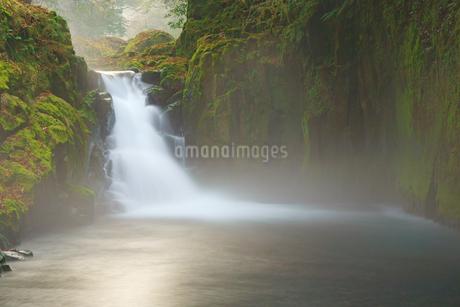冬の菊池渓谷の写真素材 [FYI04088009]