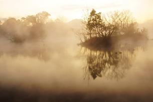 浮島周辺水辺公園の写真素材 [FYI04088028]