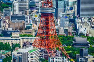 東京タワーと都市風景の写真素材 [FYI04088622]