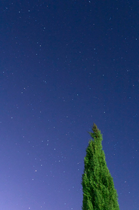 冬空に願いをの写真素材 [FYI04088763]