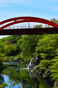 高津戸峡の新緑と高津戸橋 の写真素材 [FYI04088813]