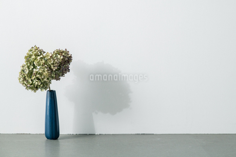 Bouquet in vase on white background. Modern lifestyle concept.の写真素材 [FYI04088897]