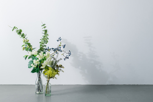 Bouquet in vase on white background. Modern lifestyle concept.の写真素材 [FYI04088898]