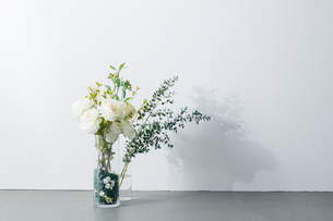 Bouquet in vase on white background. Modern lifestyle concept.の写真素材 [FYI04088899]