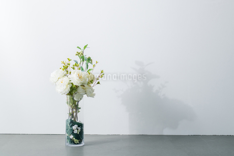 Bouquet in vase on white background. Modern lifestyle concept.の写真素材 [FYI04088900]