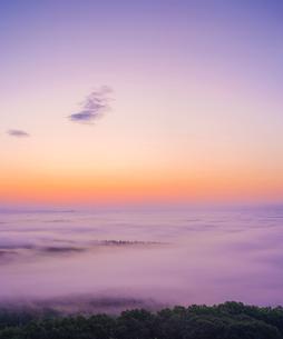 北海道 自然 風景 朝焼けと雲海の写真素材 [FYI04088914]