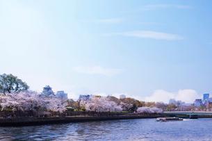 大阪城と桜と船の写真素材 [FYI04089152]