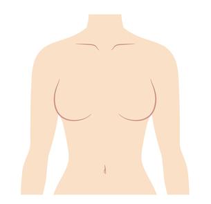 女性の胸 上半身のイラストのイラスト素材 [FYI04089798]