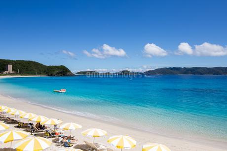 沖縄県座間味ビーチの写真素材 [FYI04089834]