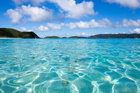 沖縄県座間味ビーチの写真素材 [FYI04089849]