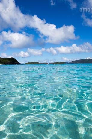沖縄県座間味ビーチの写真素材 [FYI04089850]