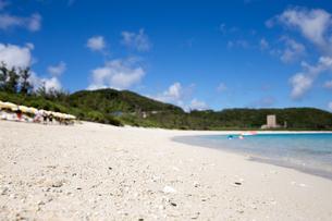 沖縄県座間味ビーチの写真素材 [FYI04089851]