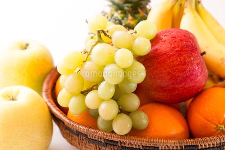 白背景のフルーツの写真素材 [FYI04089912]