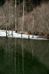 自然湖の写真素材 [FYI04090426]