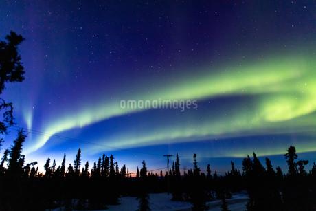 アラスカ フェアバンクスの薄暮に現れた春のオーロラの写真素材 [FYI04090547]