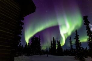 アラスカ フェアバンクスのオーロラの写真素材 [FYI04090552]