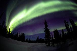 アラスカ フェアバンクスの空全体に出現したオーロラの写真素材 [FYI04090553]