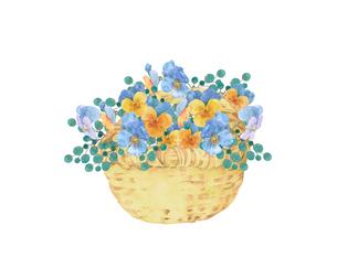 パンジーの花籠のイラスト素材 [FYI04090674]