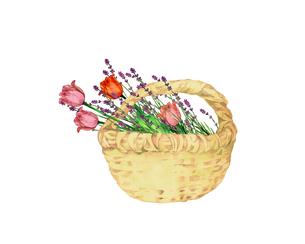 チューリップとラベンダーの花籠のイラスト素材 [FYI04090679]