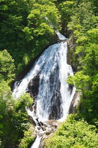 新緑の七ツ滝の写真素材 [FYI04090775]