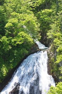 新緑の七ツ滝の写真素材 [FYI04090776]