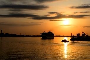 神戸港にダイヤモンドプリンセスが入港の写真素材 [FYI04091023]