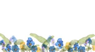 パンジーとビオラ水彩画のイラスト素材 [FYI04091145]