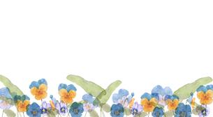 パンジーとビオラ水彩画のイラスト素材 [FYI04091146]