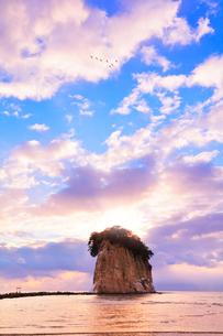 能登半島国定公園 朝の見附島と空に白鳥の写真素材 [FYI04091148]