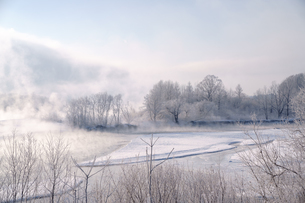 冬の十勝の写真素材 [FYI04091181]